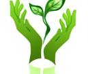 Субботник 8Д (Год экологии)